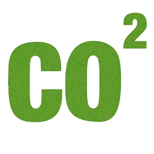 정기검사 탄소